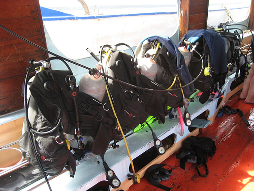 ready to diving.jpg
